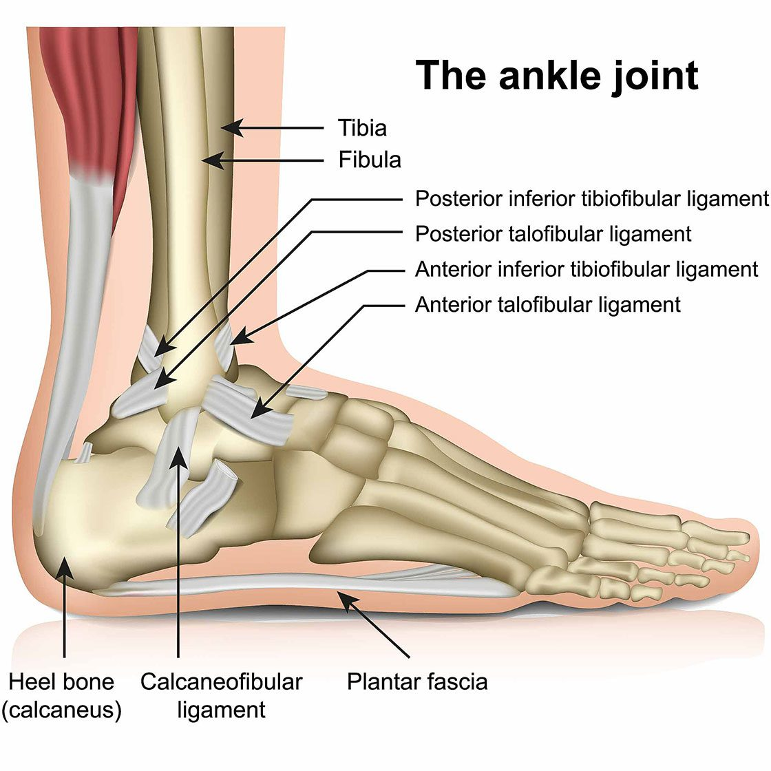 Lateral Ankle Sprain Birmingham, Manchester, Liverpool, London, Bournemouth, Plymouth, Leicester, Nottingham, Derby, Leeds